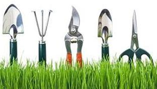 Cele mai bune 3 unelte de gradinarit + 4 sfaturi pentru ingrijirea acestora.
